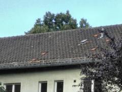 Instandsetzungsbedarf in der Siedlung Westend / Foto privat