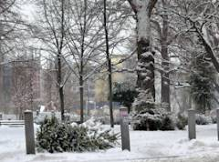 Winter am Klausenerplatz