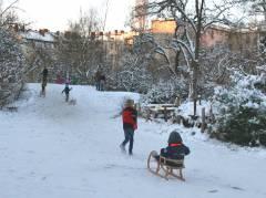 Winter im Kiez - Schlittenfahren im Ziegenhof (Dez. 2014)