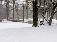 Winter im Schloßpark