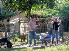 Sonntagsfrühstück mit Gartenarbeit im Ziegenhof