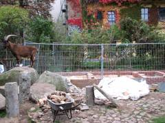 Bauarbeiten im Ziegenhof - Oktober 2010