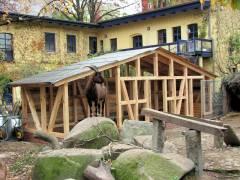 Bauarbeiten im Ziegenhof - Ende Oktober 2010